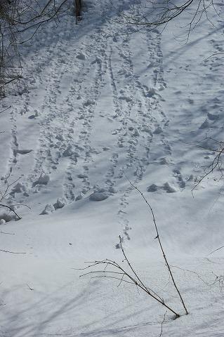 伏伸の滝02690