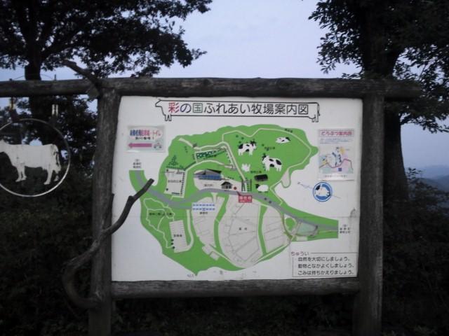 NCM_0917.jpg