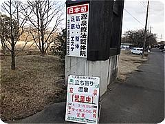 s8439.jpg