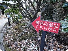 s8469.jpg