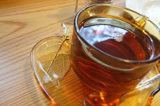 カイトお茶