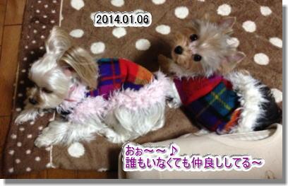 20140116012.jpg
