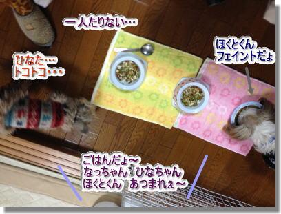 20140126002.jpg