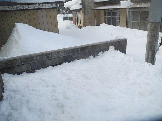 除雪で筋肉痛