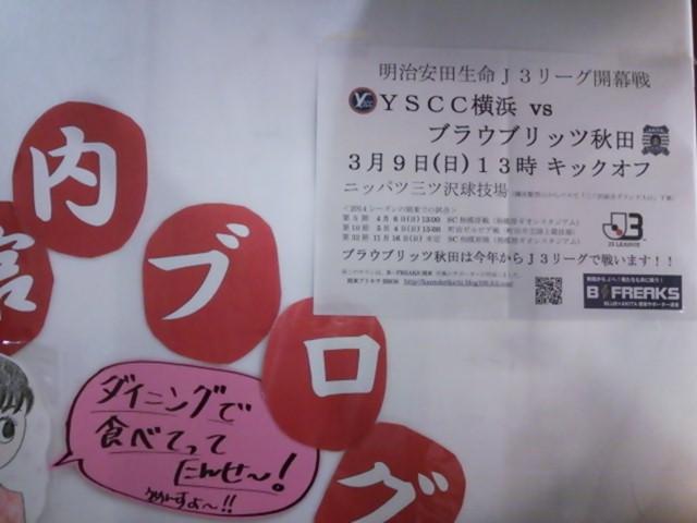 SH0032.jpg