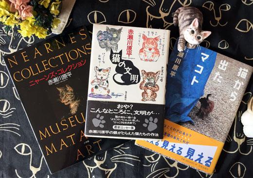 141027_akasegawa.jpg