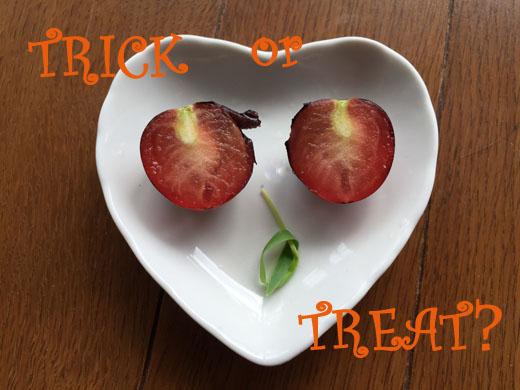 141031_tomato.jpg