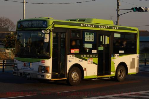 IMGP5281.jpg