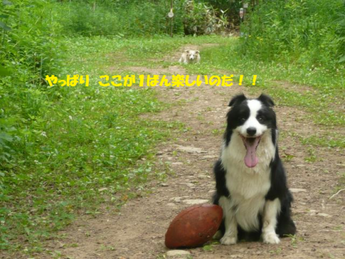 FDS・托シ点convert_20120702231450