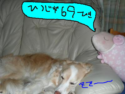 snap_katudon1121_201250101733.jpg