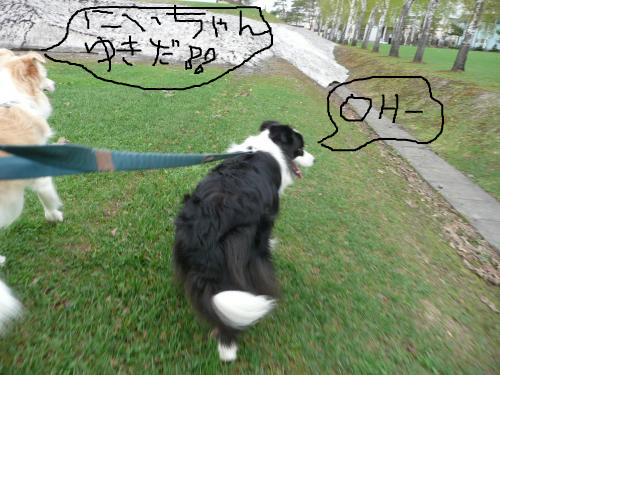 snap_katudon1121_201252102428.jpg
