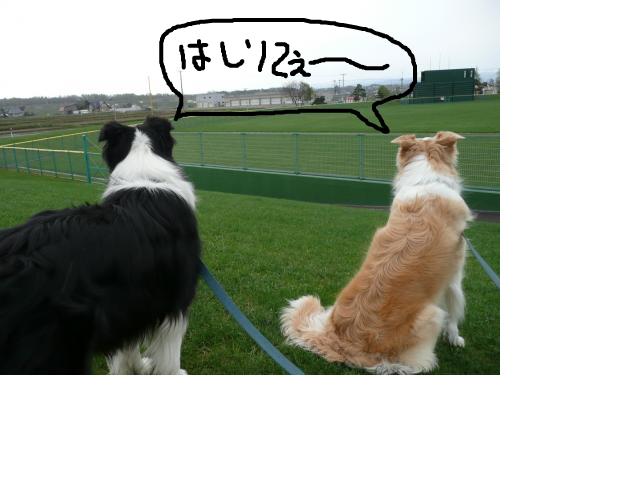 snap_katudon1121_20125210926.jpg