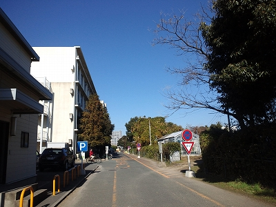 HakozakiCampus