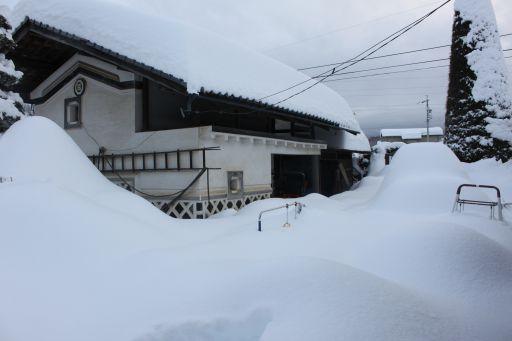 yukiniwa_512.jpg