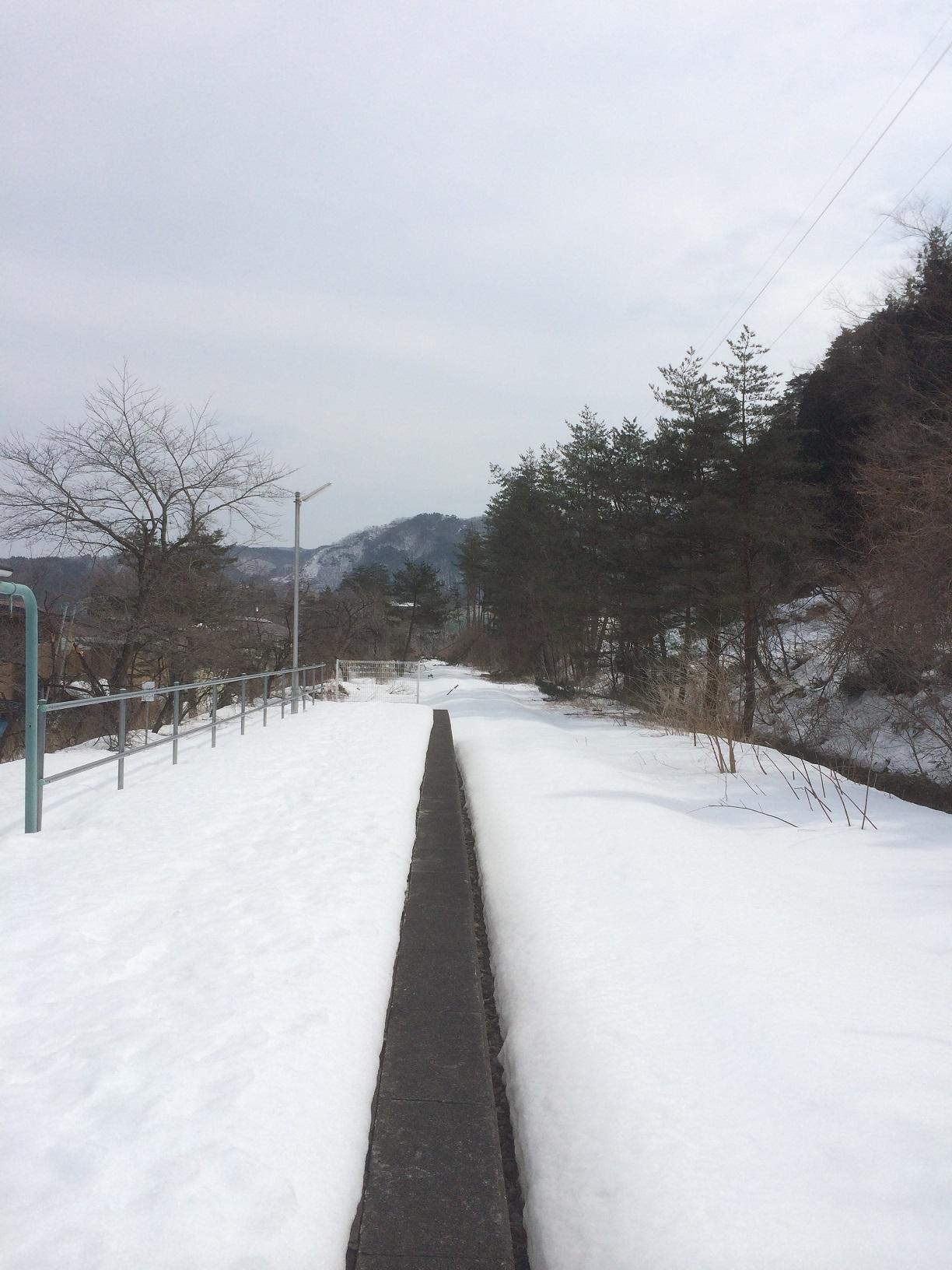 Iwaizumi17