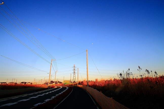 20121224nafuko03.jpg