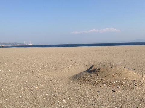 三浦海岸の正月1