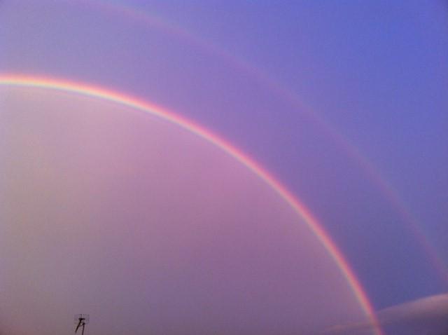 見あげれば虹