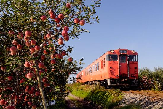 リンゴの唄