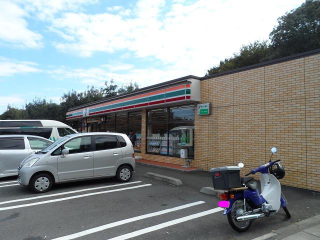 chichibu20120519.jpg