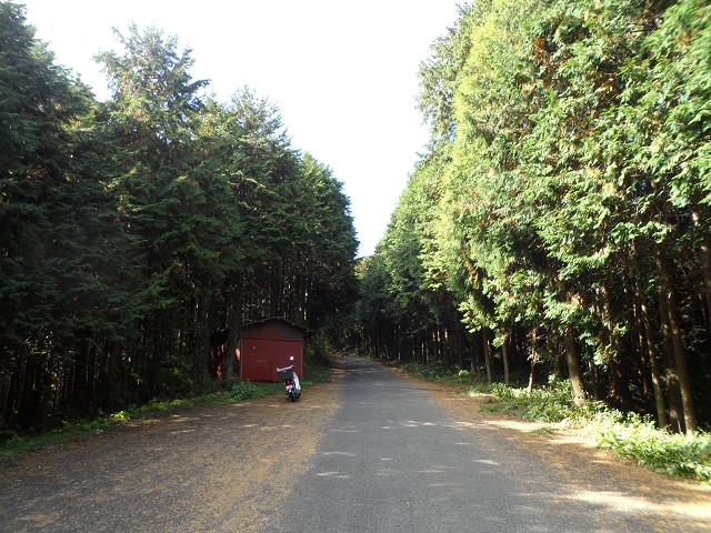 chichibu20120523.jpg