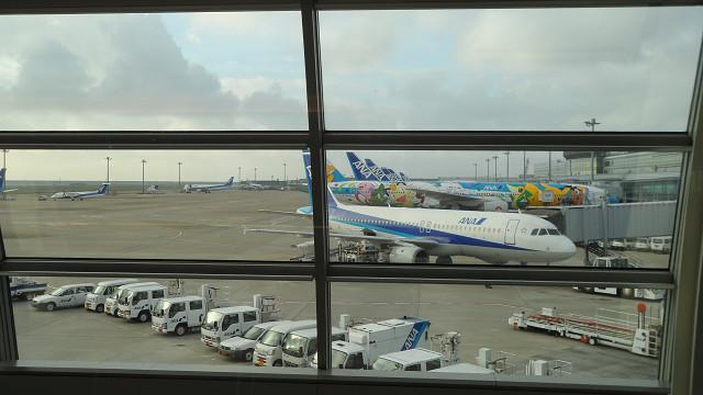 kagoshima20120092.jpg