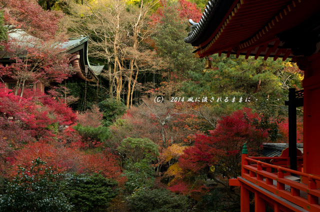 2013年 京都・毘沙門堂の紅葉13