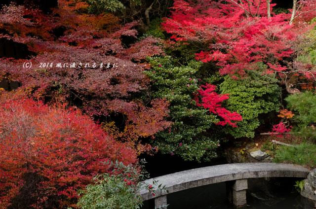 2013年 京都・毘沙門堂の紅葉17