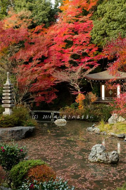 2013年 京都・毘沙門堂の紅葉18