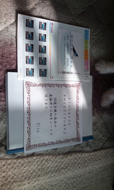 20121213113325138.jpg
