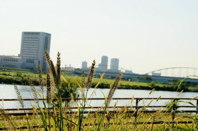 DSC04543秋景色