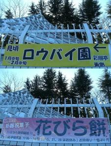 s-GEDC0084cx.jpg