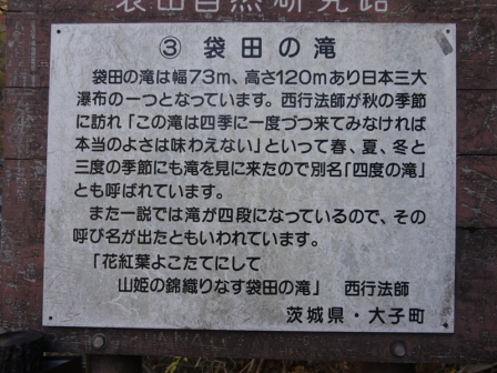 P1420546.jpg