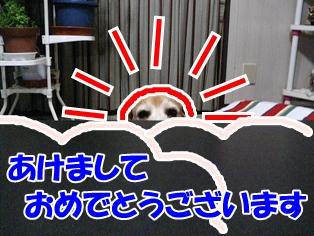 20130101_3.jpg