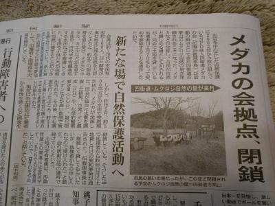 2014_0128_yotsukaidoumedaka_0004_R.jpg