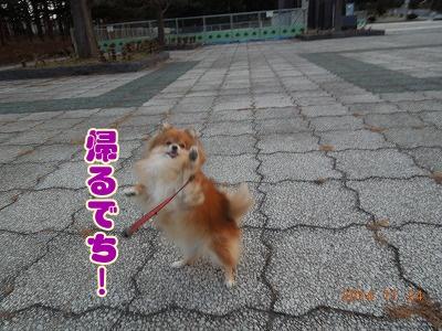 2014112403.jpg