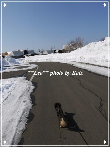 20120310 Leo (3)