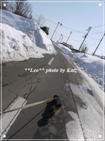 20120310 Leo (1)