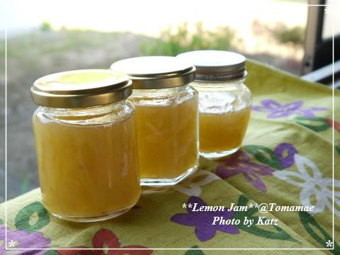 2012 Lemon Jam (1)