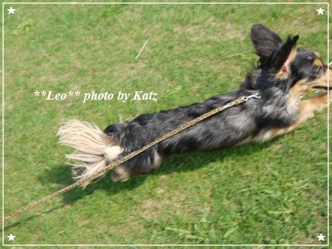 20120506 Leo (8)