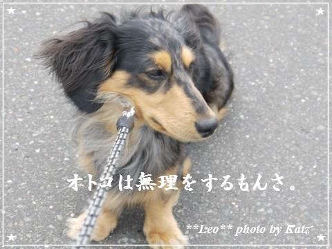 20120616 Leo (3)
