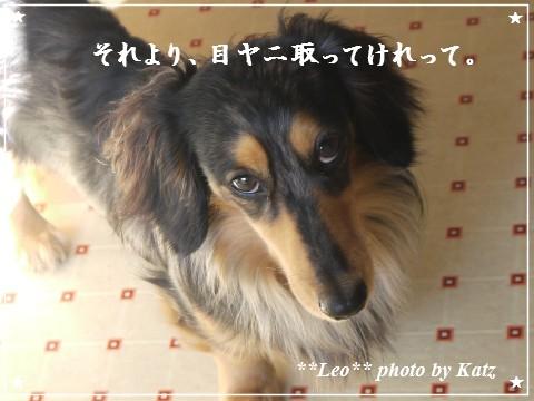 20120625 Leo (3)