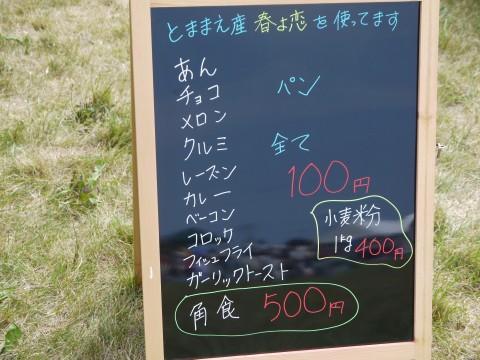 2012風車まつり (14)