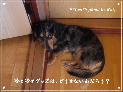 20120730 Leo (2)