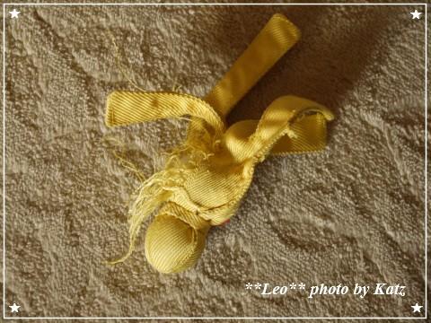 201200825(朝) Leo (6)