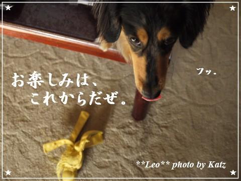 201200825(朝) Leo (5)