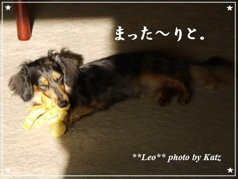 201200825(朝) Leo (1)