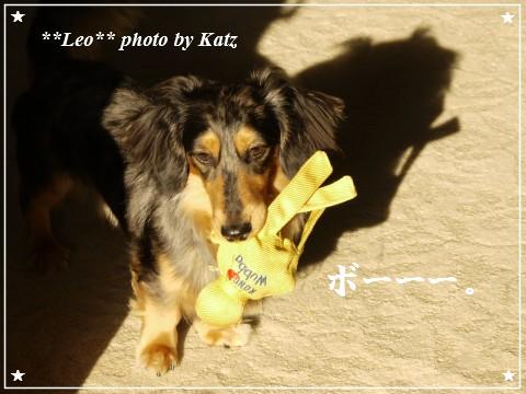 201200825(朝) Leo (10)