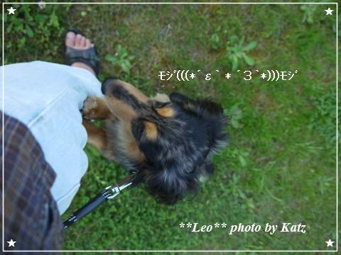 20120825(夕) Leo (4)