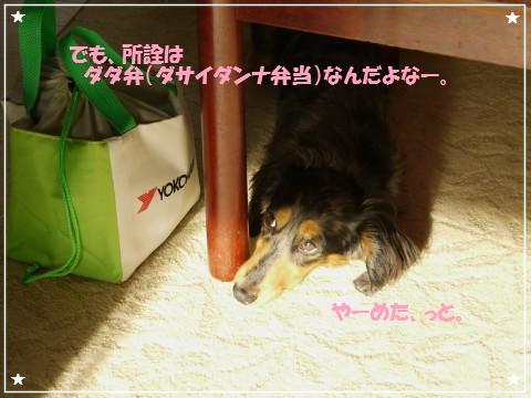 20120829 Leo (1)